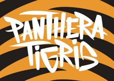 Studio-071-Panthera-Tigris-logo