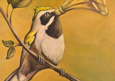 Tim-Juffermans---SingingbirdV2